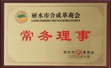 2008丽水合成革常务理事