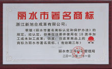 2012丽水市著名商标