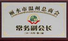 2016丽水温州总商会常务副会长